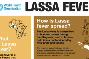 FG Commends Efforts Of States On Control Of Lassa ...